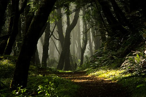 Enchanted Forest, Lincoln City, Oregon