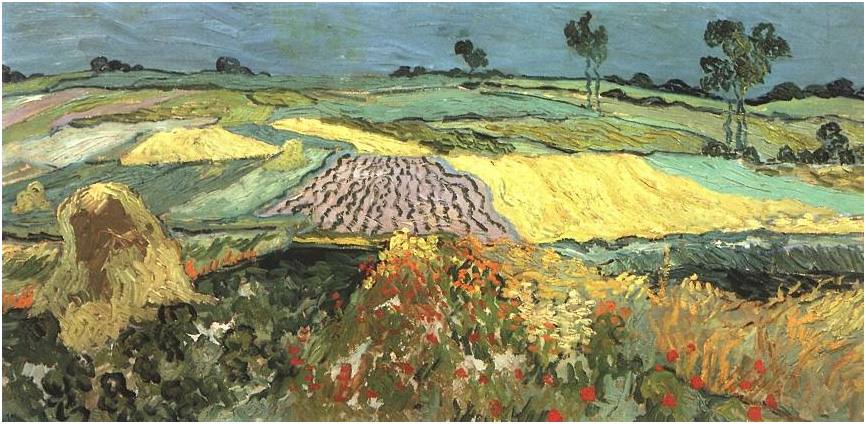 Wheat Fields Near Auvers By Vincent Van Gogh 755 Painting