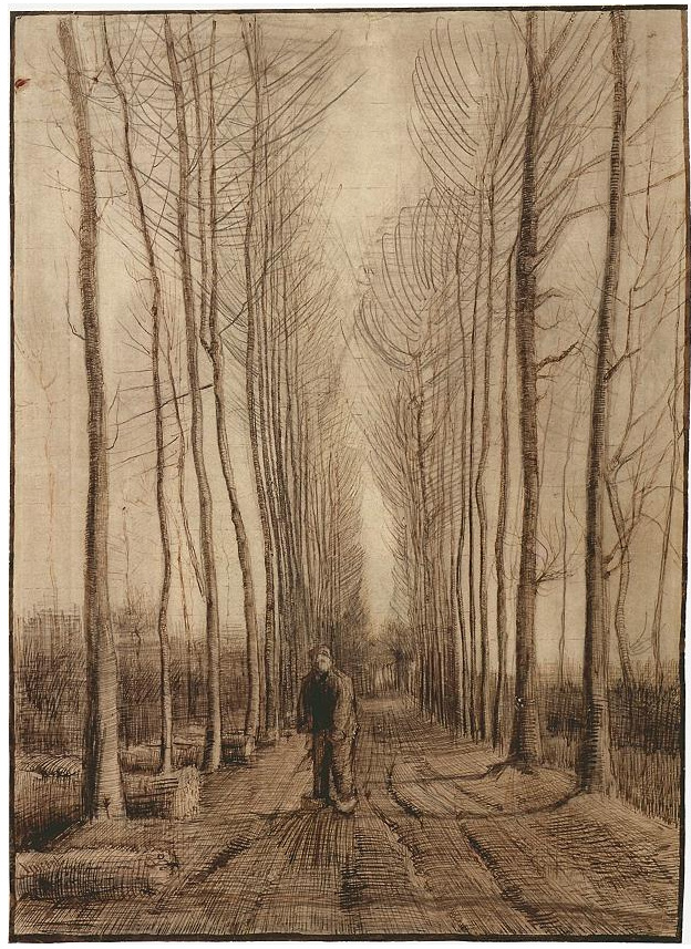 Avenue Of Poplars By Vincent Van Gogh 792 Drawing