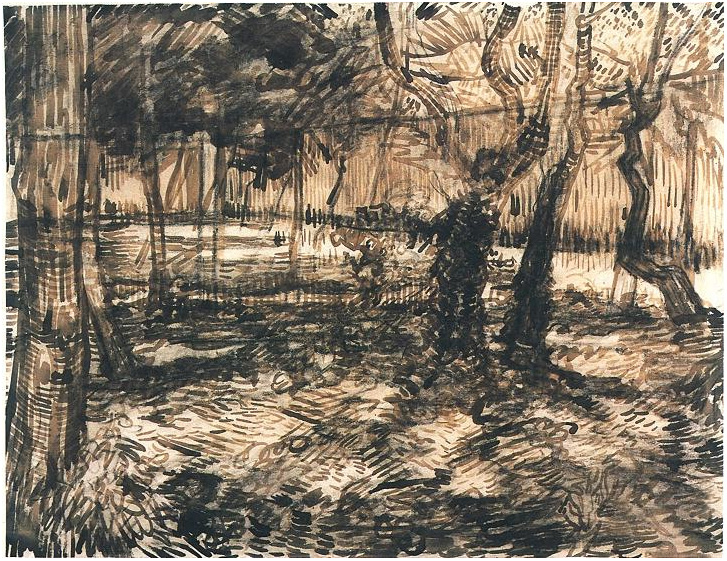 Trees In The Garden By Vincent Van Gogh 1642 Drawing