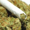 Teenagers allegedly threaten to stab neighbour cautioning them against hemp smoking