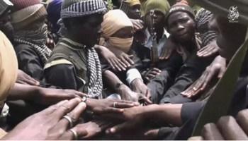 Image result for Boko Haram militants kill 31 fishermen in Lake Chad region