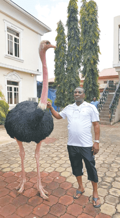 Wasiu Ayinde at his Ijebu Ode home