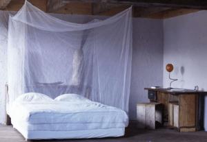 mosquito net, Malaria