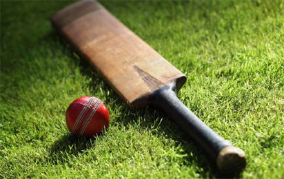 Cricket: Abuja Ovals to be ready before National Sports Festival
