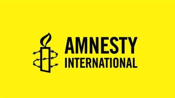 Amnesty International: CSO condemns alleged govt sponsored protest