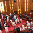 Over N863b Subsidy: Senate Gives FG one week to meet with CBN, DMO, Stakeholders, Oil Marketers