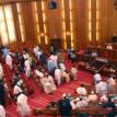 Senate holds public hearings on 5 educational bills