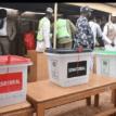 Natasha Akpoti: Heroine of the Kogi election