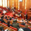 Senate decries high debt profile, as senators begin debate on 2019 budget