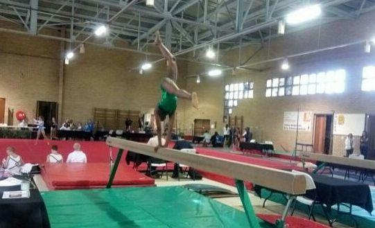 bodybuilder, gymnastics
