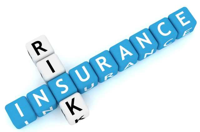 Insurance grows