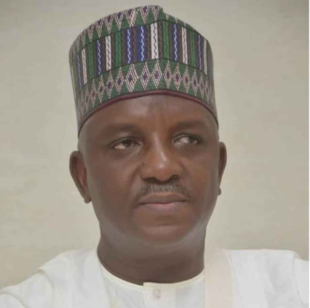Sale Mamman, Minister of Power
