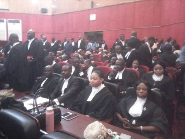 Tribunal, Court, Election
