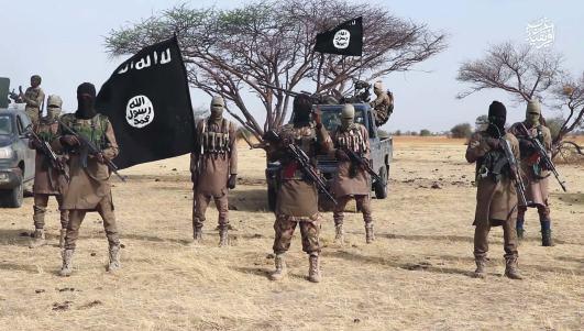 ISWAP frees jihadist