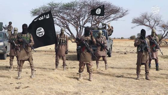 ISWAP fighters kill 11 villagers, injure 20 in Borno