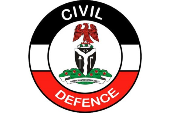 NSCDC arrests 1,314 suspects for crime in Edo