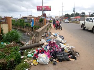 175 people apprehended for violation of environmental laws in Ekiti —Commissioner