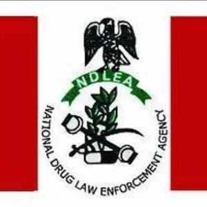 Edo community protest killing by NDLEA who is on wanted list