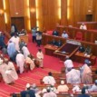 Social Calamity Looms in the country if Unemployment is not addressed, Senate Warns