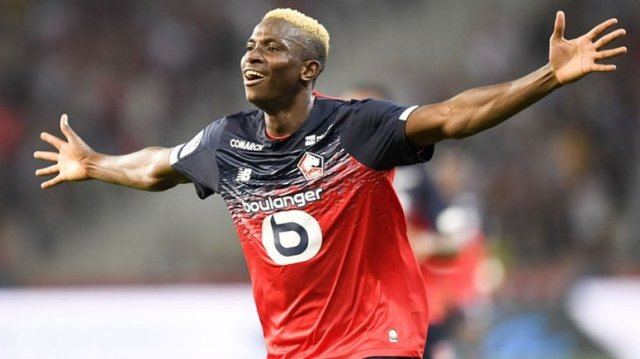 Lille willing to sell Osimhen, 2 others to Tottenham