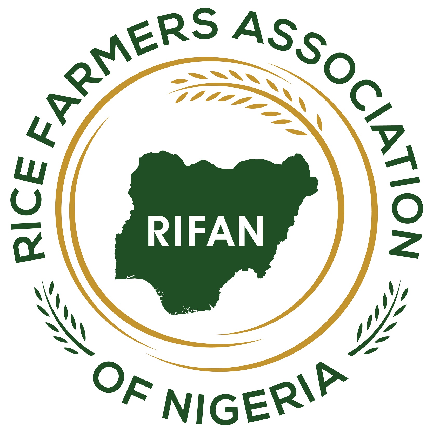 More Farmers Enroll For Dry Season Rice Farming In Delta Rifan