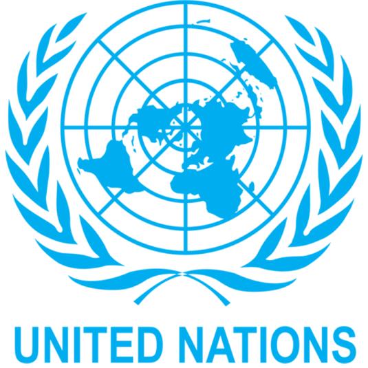 Around $1bn needed for Nigeria humanitarian crisis ― UN