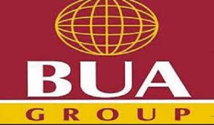 BUA plans 3m metric-tonne cement company, 50mw power plant for Adamawa