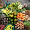 Food security: Lagos trains agric extension agents, assures priority attention