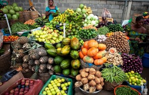 Zero hunger: Coordinator urges FG to key into programme for food sufficiency