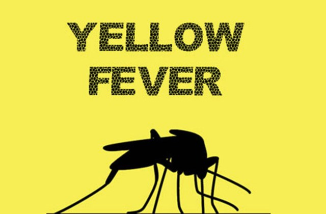 Nigeria: Yellow fever suspected cases hit 1,558 in 8 states