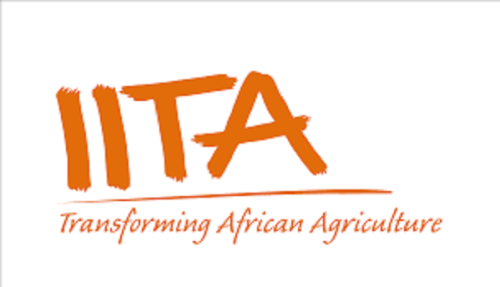 Agriculture: IITA seeks joint efforts on digital tools