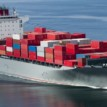 Global economy's rebound will determine shipping's 'fate'