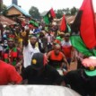 Breaking: Troops arrest 20 IPOB members, recover arms, hands them to Police