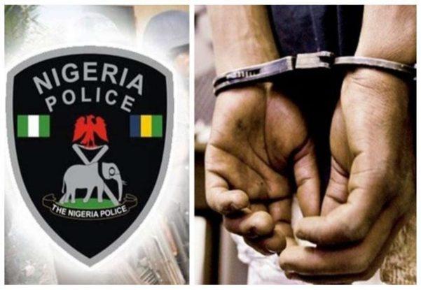 Police arrest nine land grabbers in Ogun