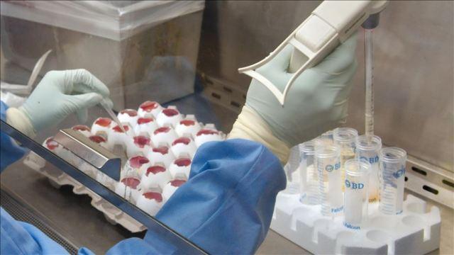 Coronavirus: Nigeria places ports health services at alert