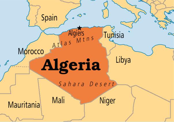 Algeria parliament adopts constitutional reforms