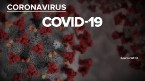 COVID-19 cases in China fall for 2nd day