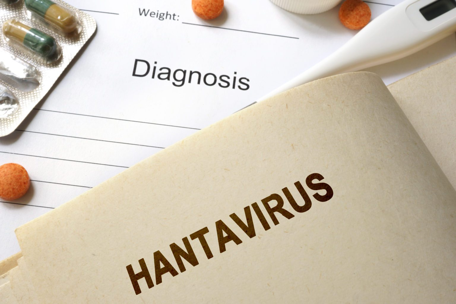 Man who died on bus in China tests positive for 'hantavirus'