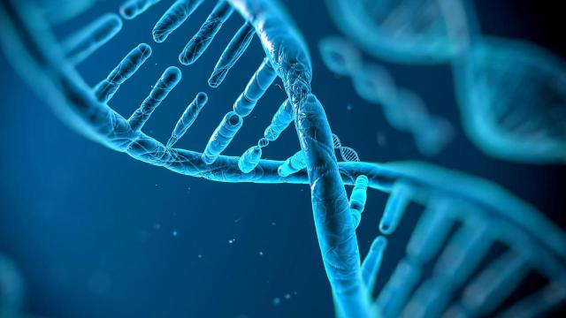 Scientists unravel secrets from the faults in our genes