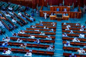 Reps Approve fresh $1.5billion, €995M FG borrowing plan