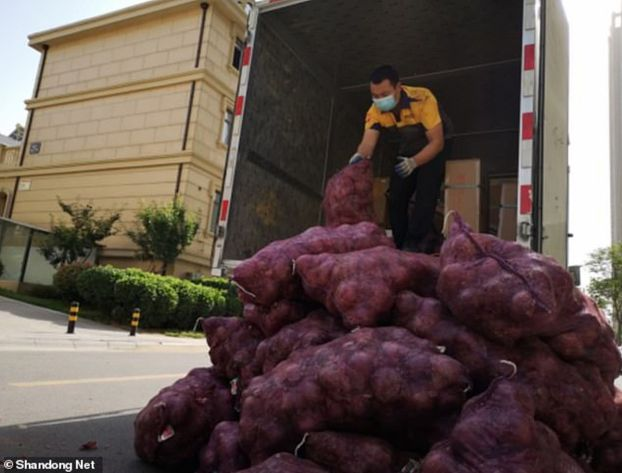'I cried for 3 days, it's your turn': Chinese woman sends tonne of onions to ex