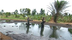 CLEANUP: Stop playing games with our lives, Ogoni elders task FG, HYPREP