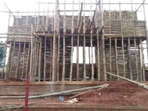 Kaduna Housing deficit: Horticulturist experiments with bamboo house