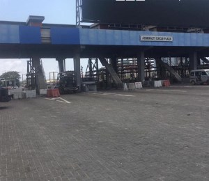 #EndSARS: Mother of alleged Lekki Tollgate shooting victim not his mother