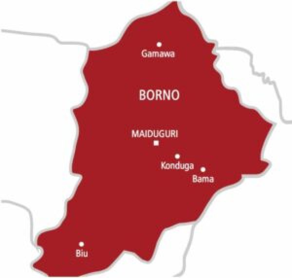 UN launches $2.3m Japan funded oxygen plants, vaccine storage in Borno