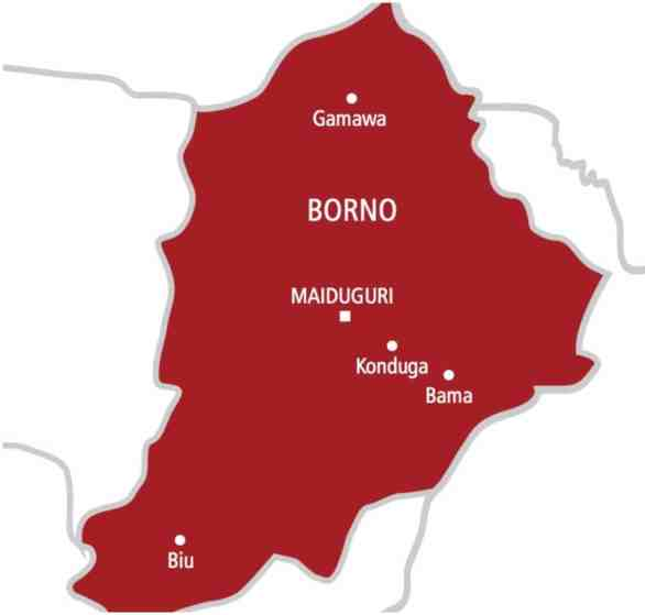 Boko Haram: 3,000 displaced persons in Borno return after 6 years
