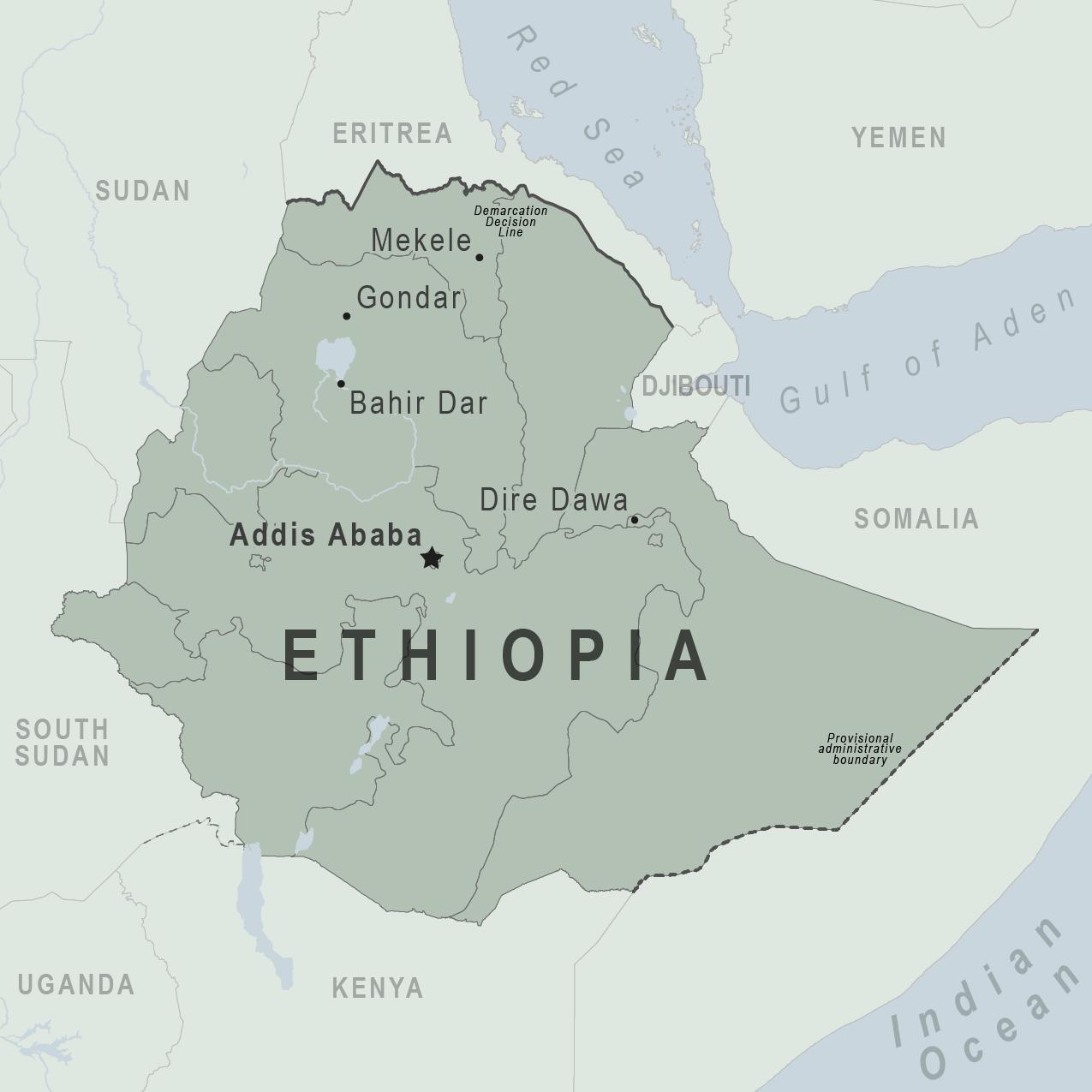 Ethiopia government says ex-speaker has surrendered
