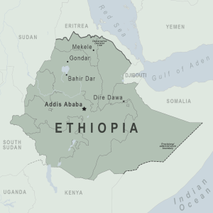 Ethiopia's Tigray crisis: Ceasefire calls as army claims progress