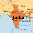 India records 2,020 COVID-19 deaths in single day